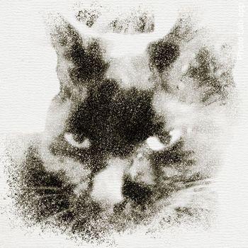 PhotoLab_app_Pointillism_Drawing.jpg